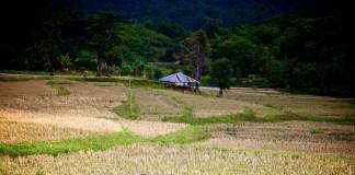 Road trip Nordthailand