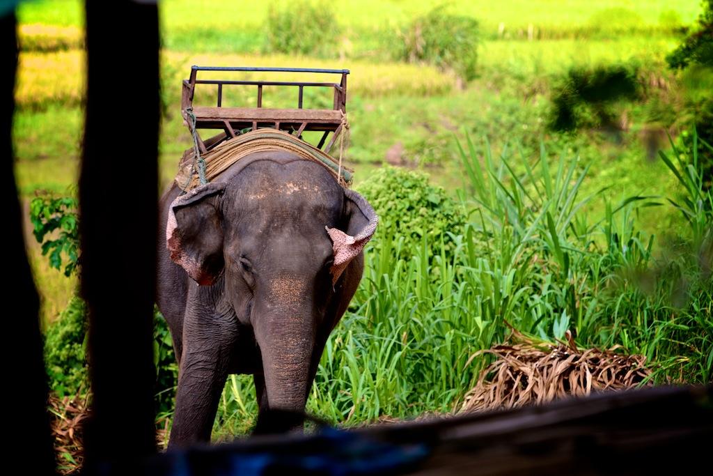 Road trip Nordthailand 8
