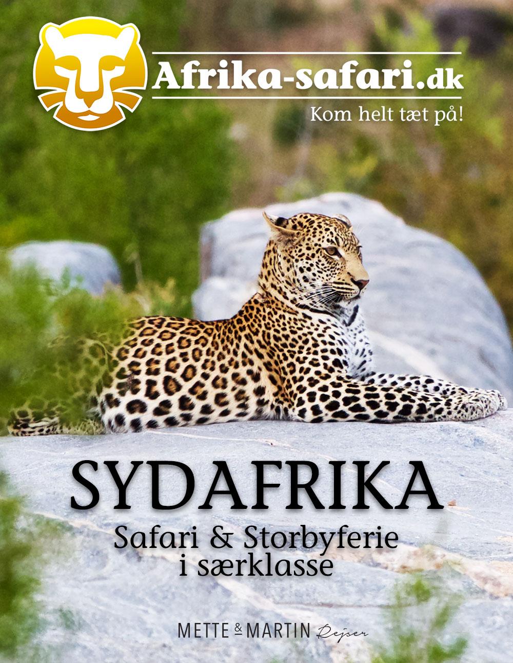 Rejseartikel om Sydafrika