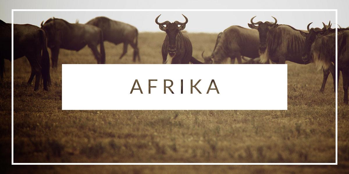 Rejseguide Afrika