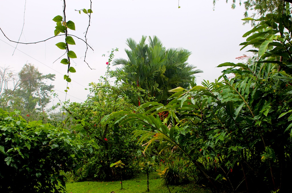 Arenal_vulkan i Costa Rica 4