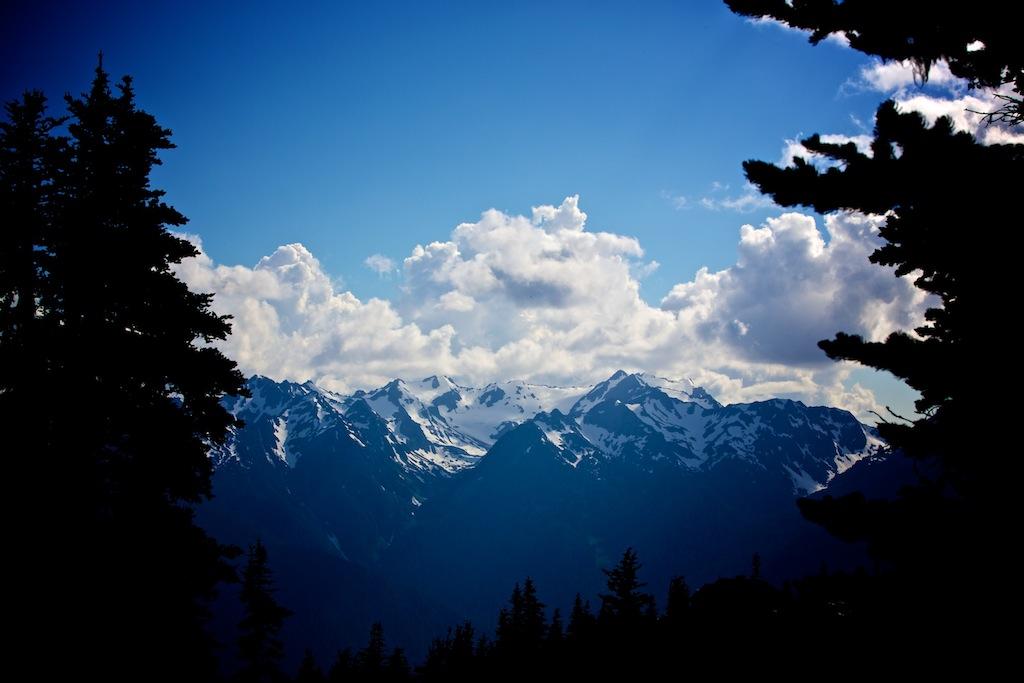 Bjerge i Washington USA 13