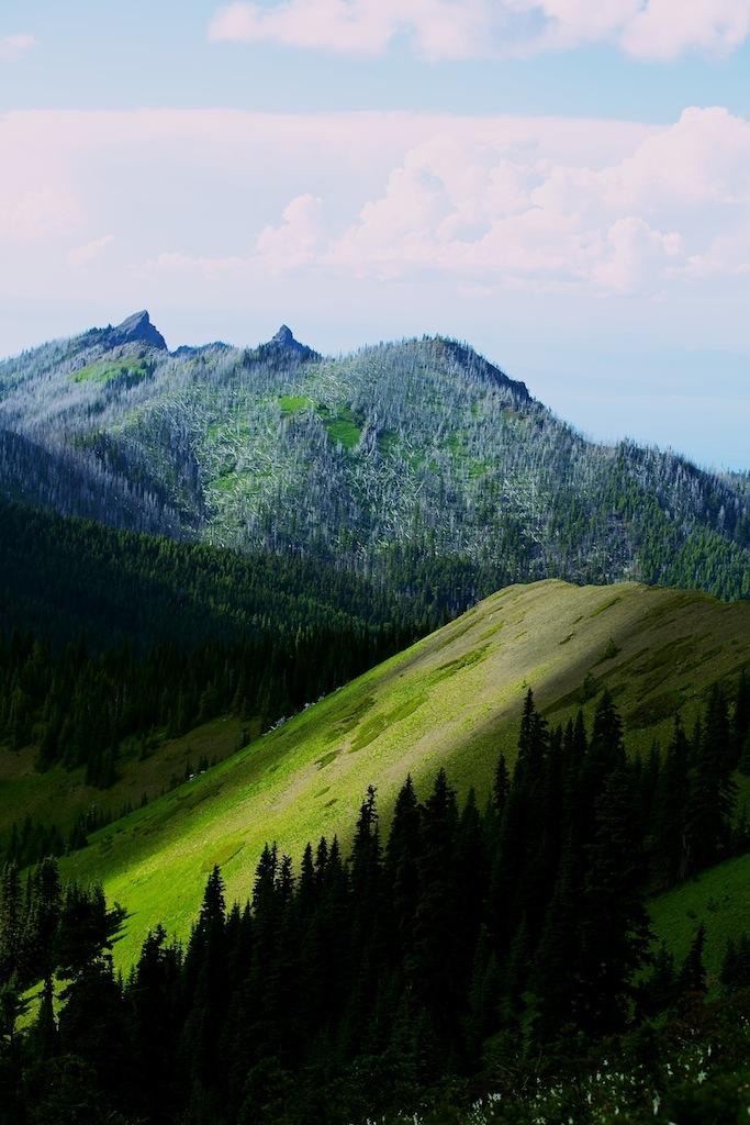 Bjerge i Washington USA 6