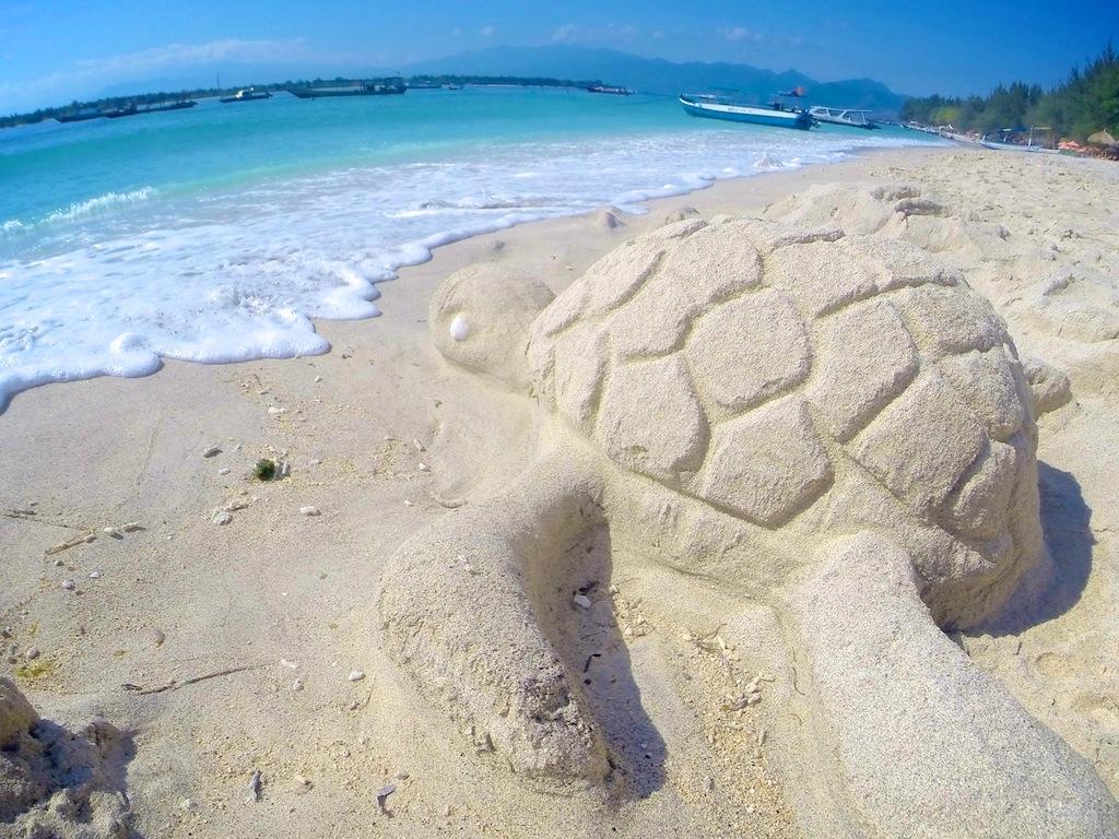 Havskildpadde ved Gili 3