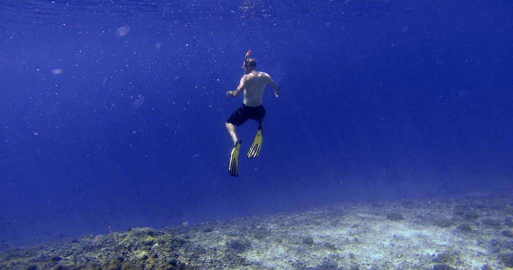 Havskildpadde ved Gili 8