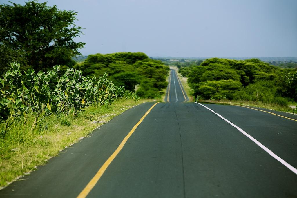 På safari i Tanzania-2
