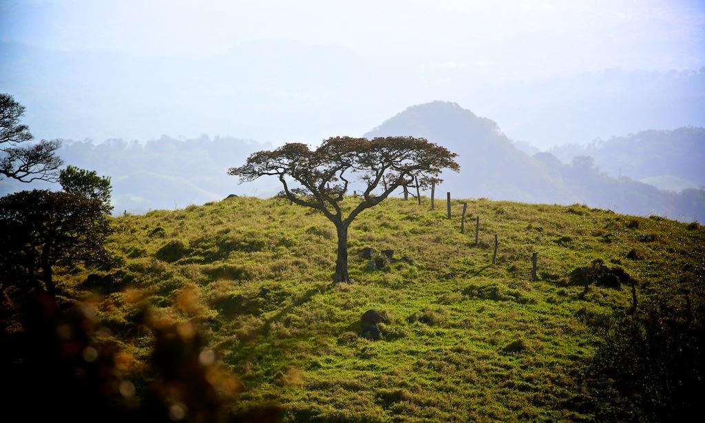 Road trip Monteverde_Costa Rica 5