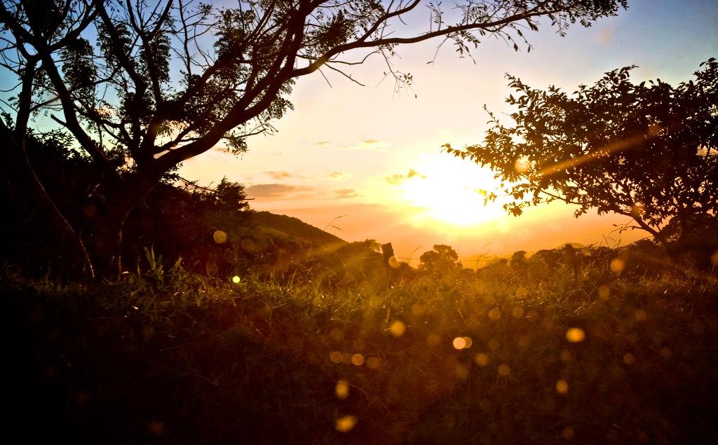 Road trip til Monteverde i Costa Rica