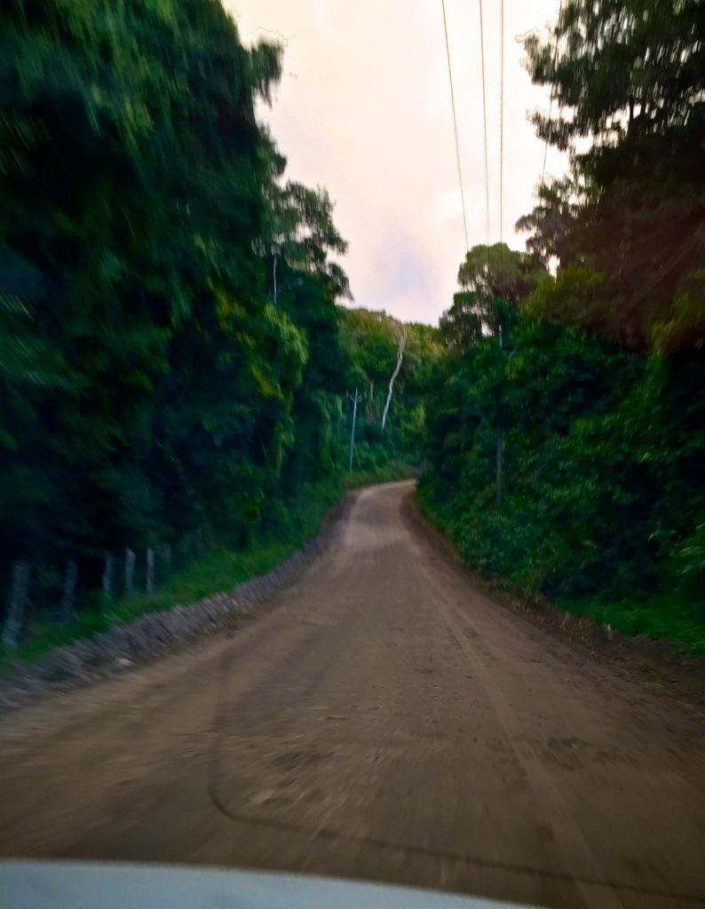 Road trip til Monteverde i Costa Rica 2