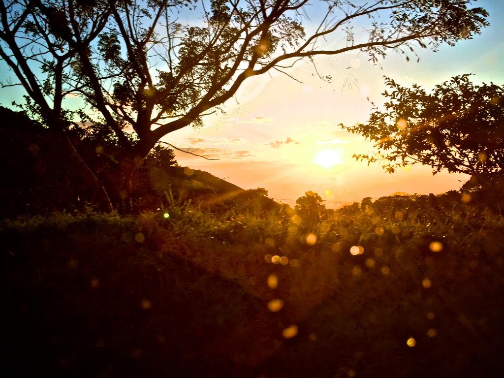 Road trip til Monteverde i Costa Rica 6