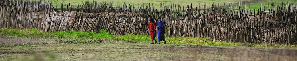 Safari i masai land 7