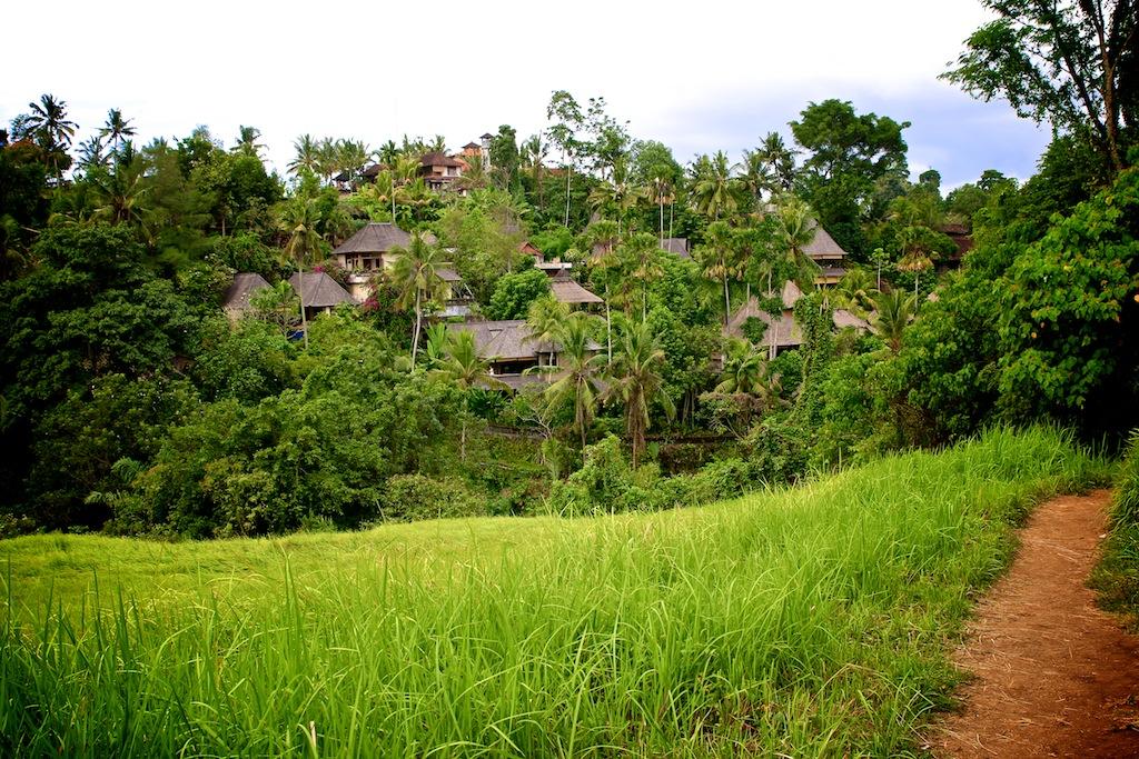 Ubud_Bali 3