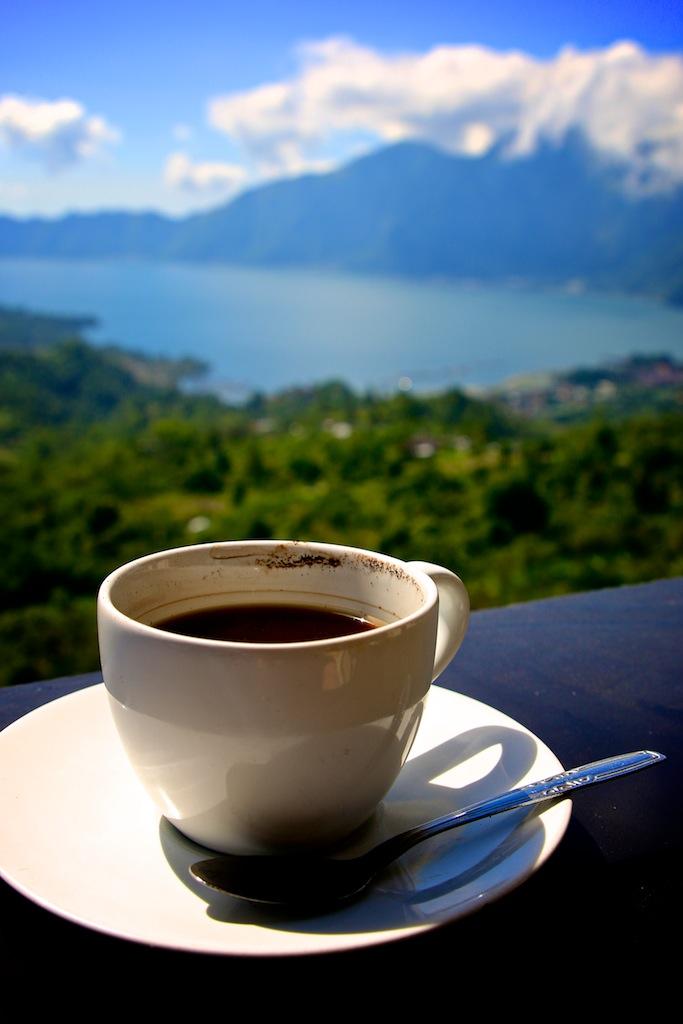Verdens dyreste kaffe på Bali 9