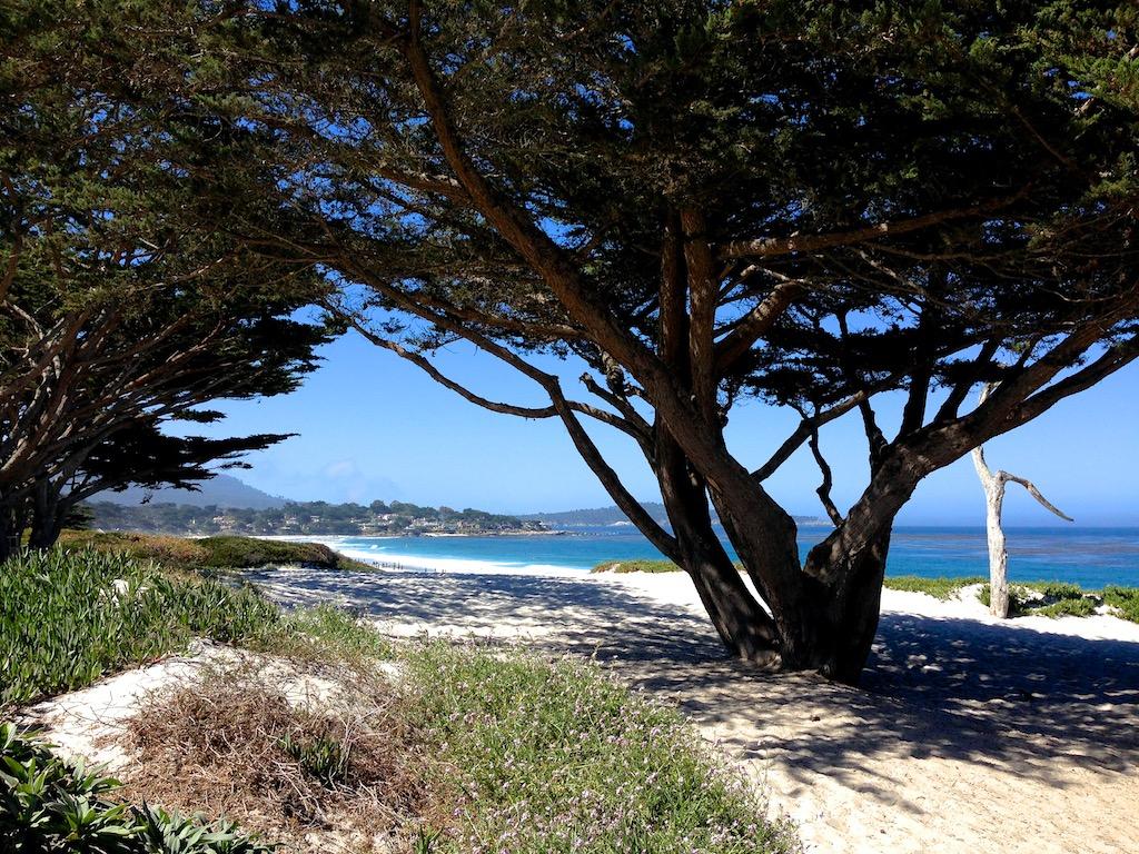 Carmel by the sea 10