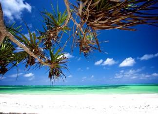 Rejseguide_de bedste strande på Zanzibar