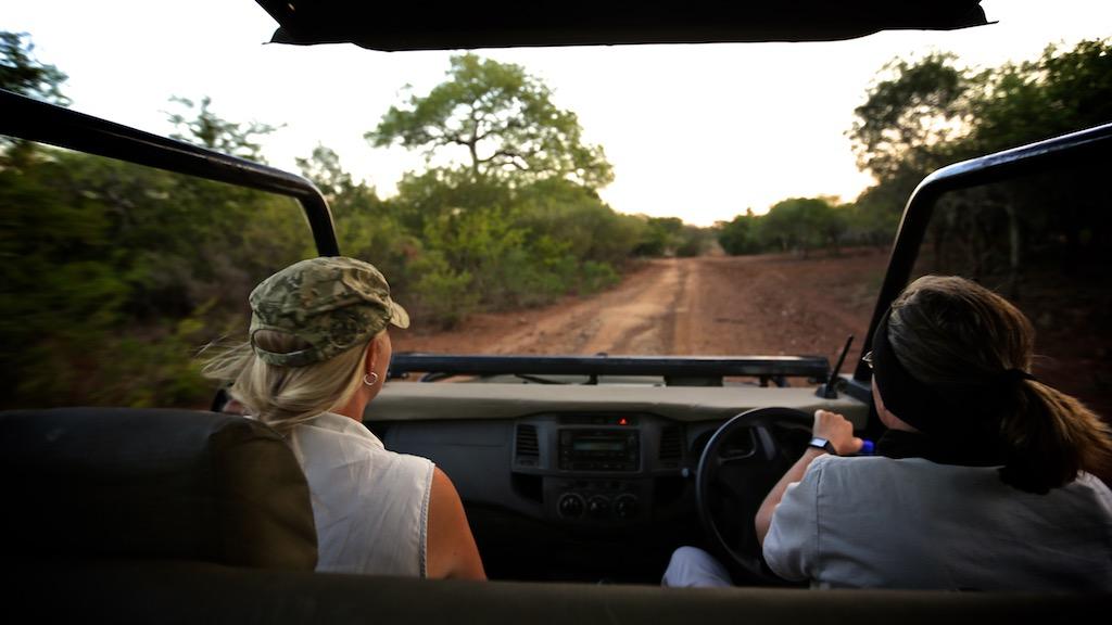 Safari Sydafrika
