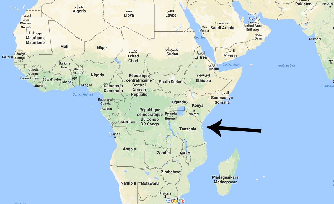 Guide Nar Rejsen Gar Til Zanzibar Mette Martin Rejser
