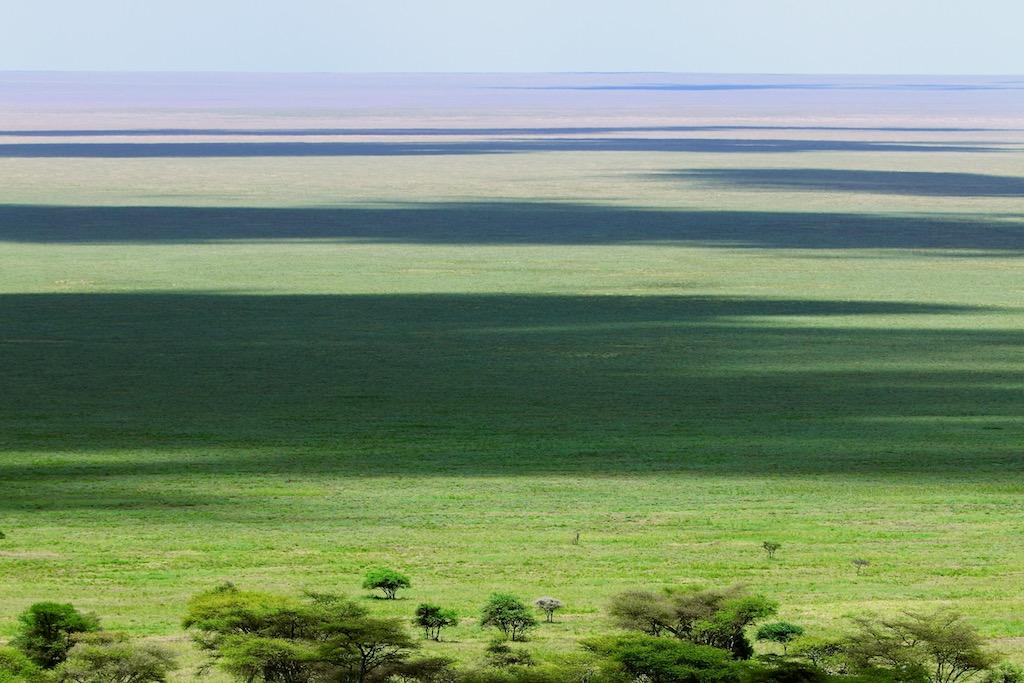 Safari på Serengeti