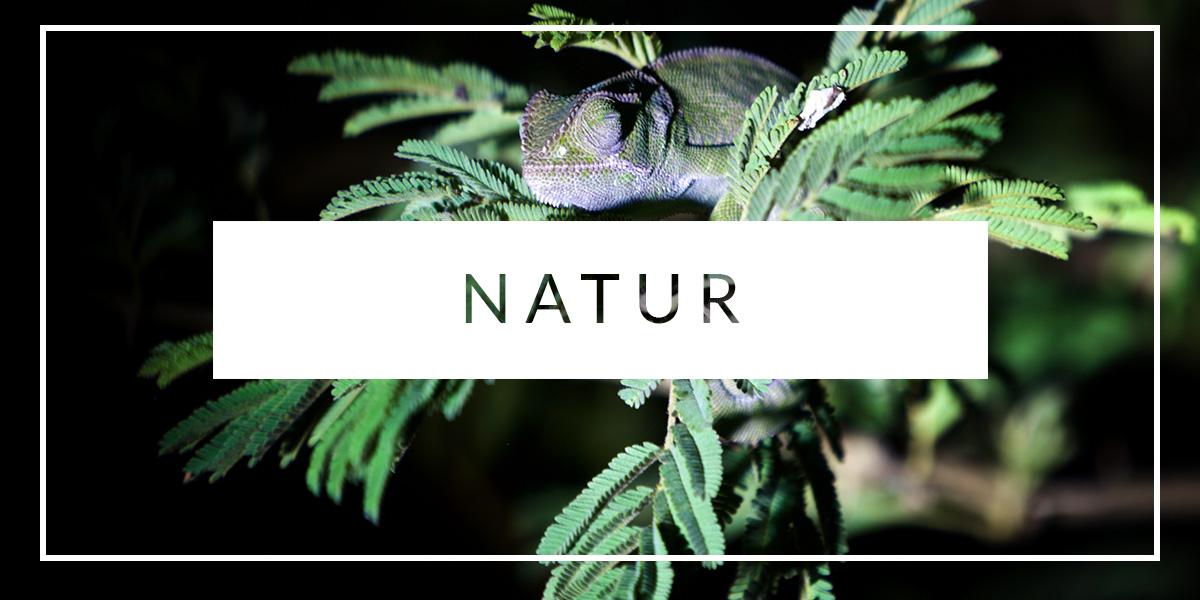 Rejser med natur