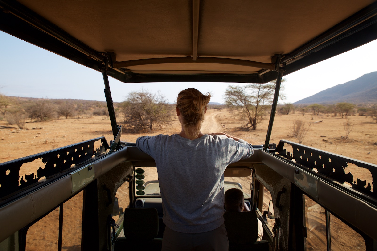 Rejseguide til safari i Afrika