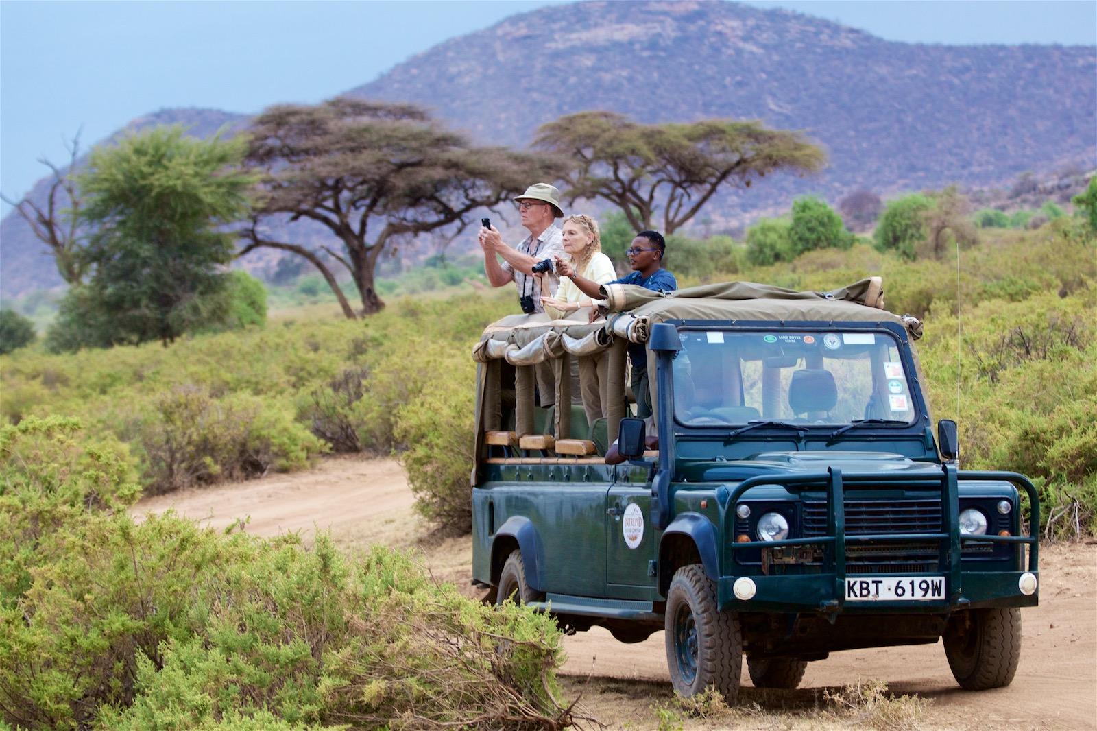 Tips til fotoudstyr til safari