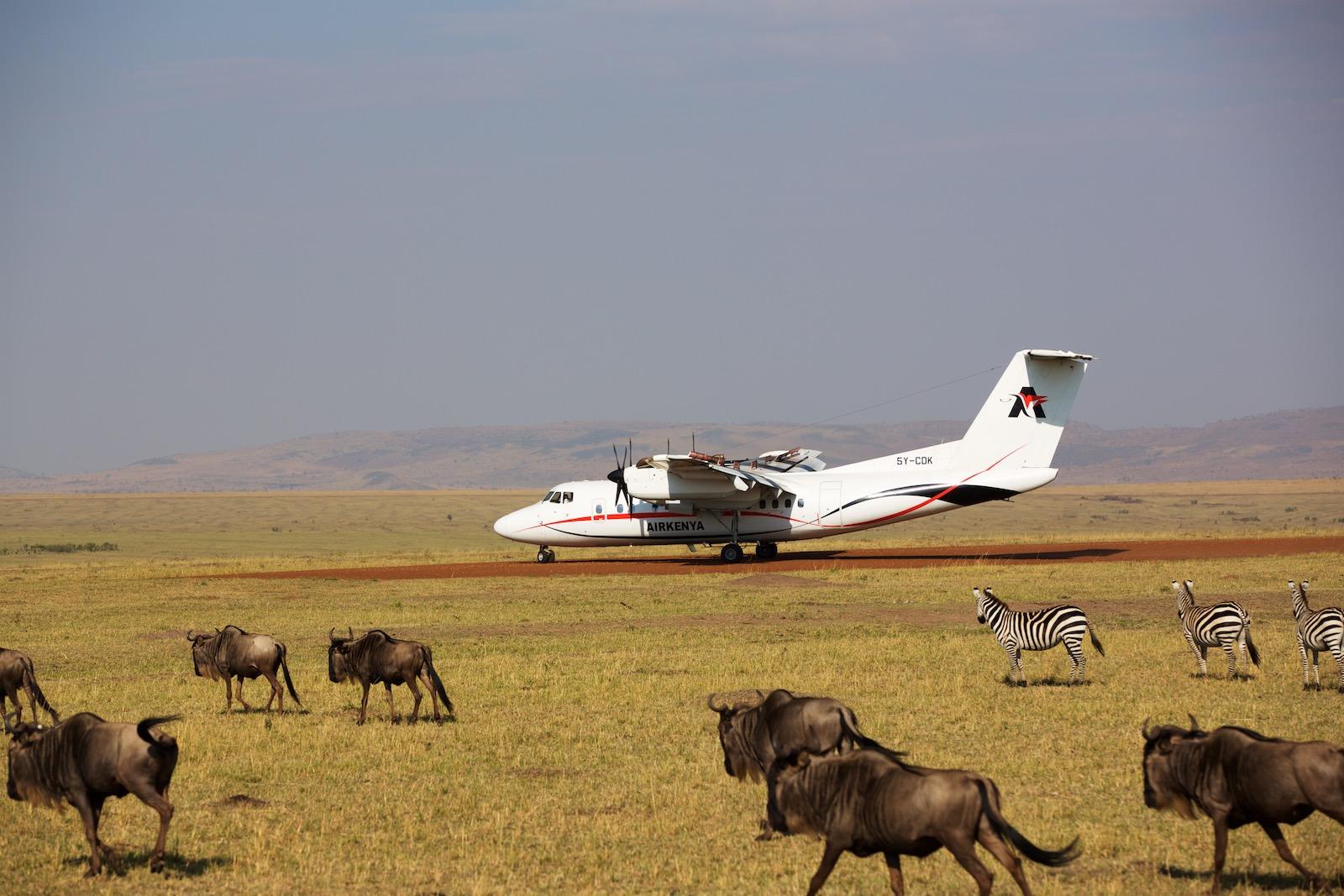 Fly til Masai Mara Kenya
