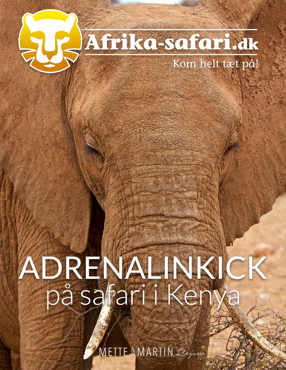 Kenya rejseartikel