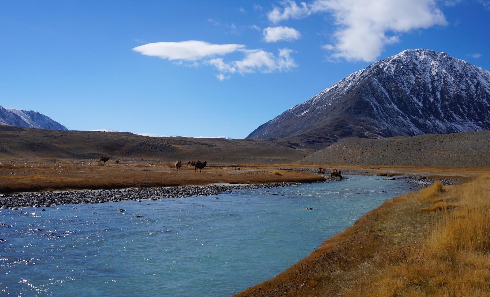 Mongoliet rejse